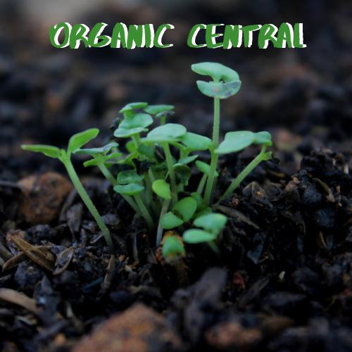 organic-central
