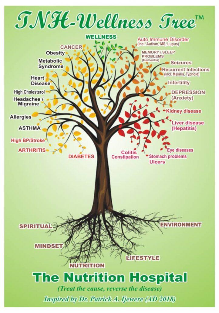 TNH-wellness-tree