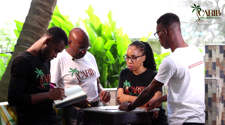 carib-wellness-school